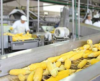 food-processing-units